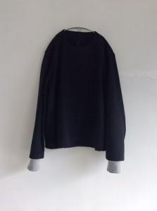 wool100 2